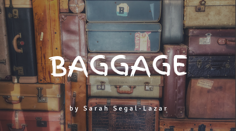 Baggage by Sarah Segal-Lazar
